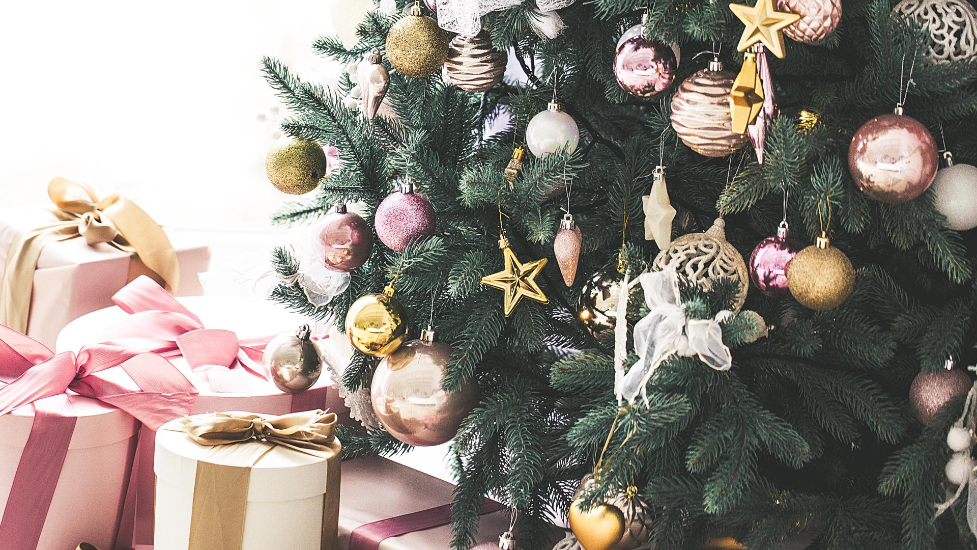 Bis Wann Bleibt Der Weihnachtsbaum Stehen.Oh Tannenbaum Sieben Wissenswerte Tipps Rund Um Den