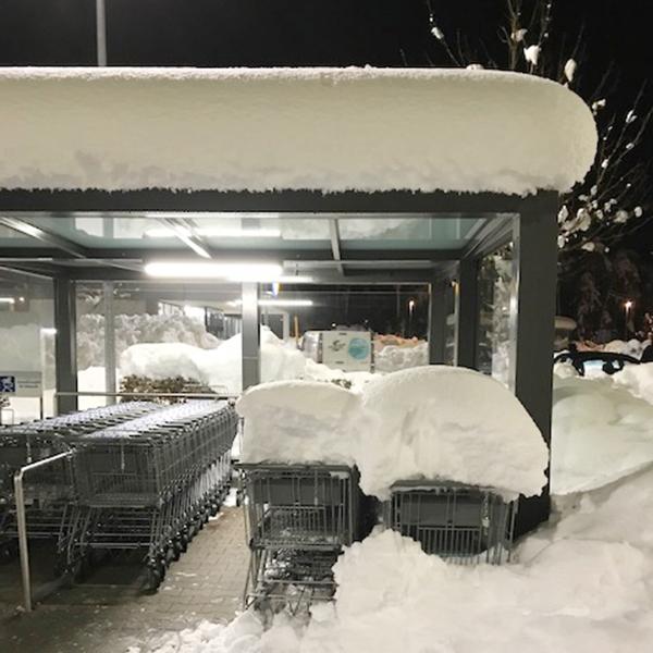 Einkaufswagen sind mit Schnee bedeckt.