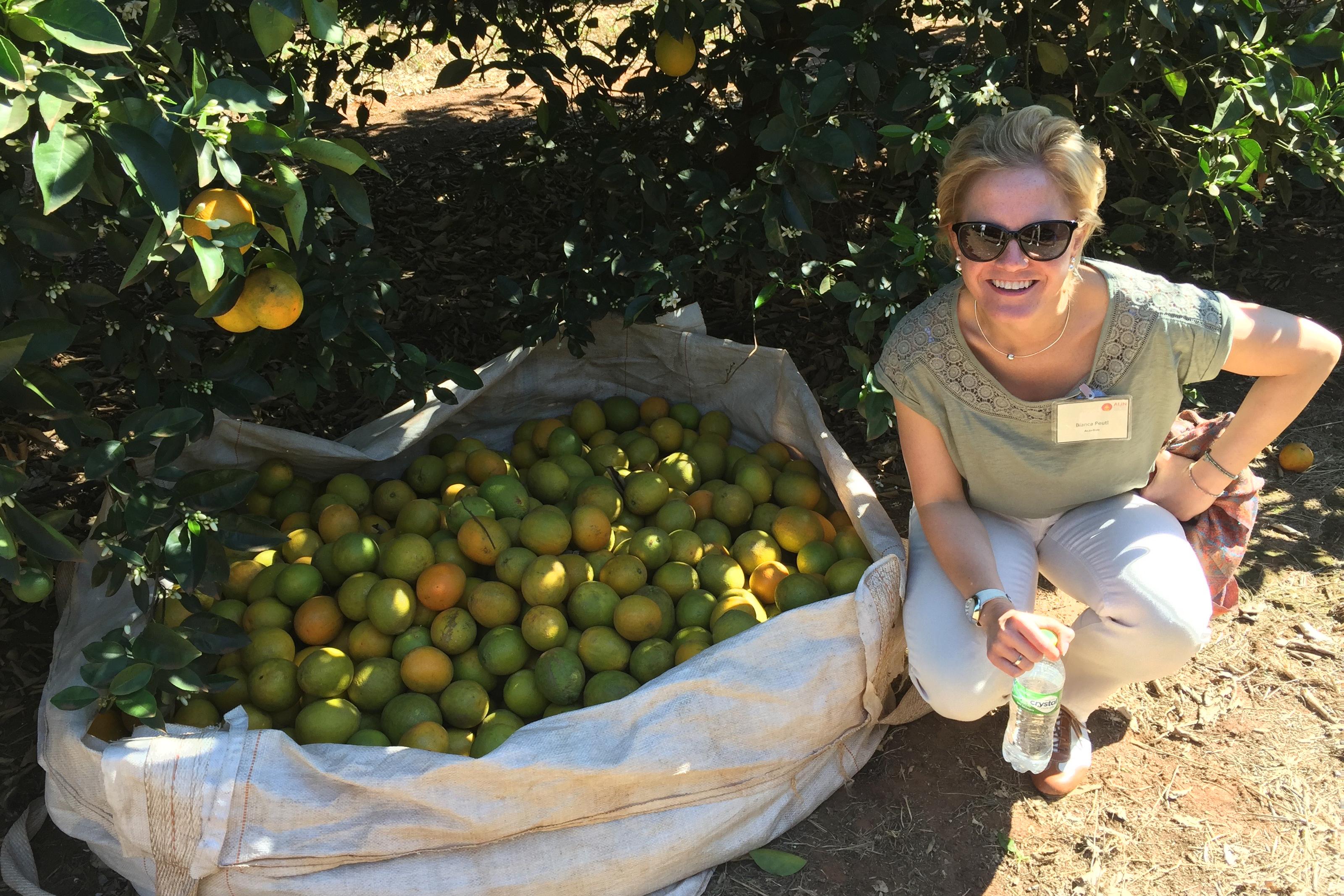 Einkauf von Fairtrade Orangensaft