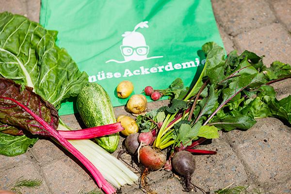 ALDI SÜD unterstützt GemüseAckerdemie